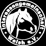 21st International Welsh Show